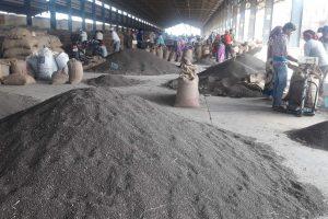 کوٹہ کی بھاماشاہ منڈی میں فروخت کےلیے آئی ارد۔ (فوٹو :اودھیش آکودیا/دی وائر)
