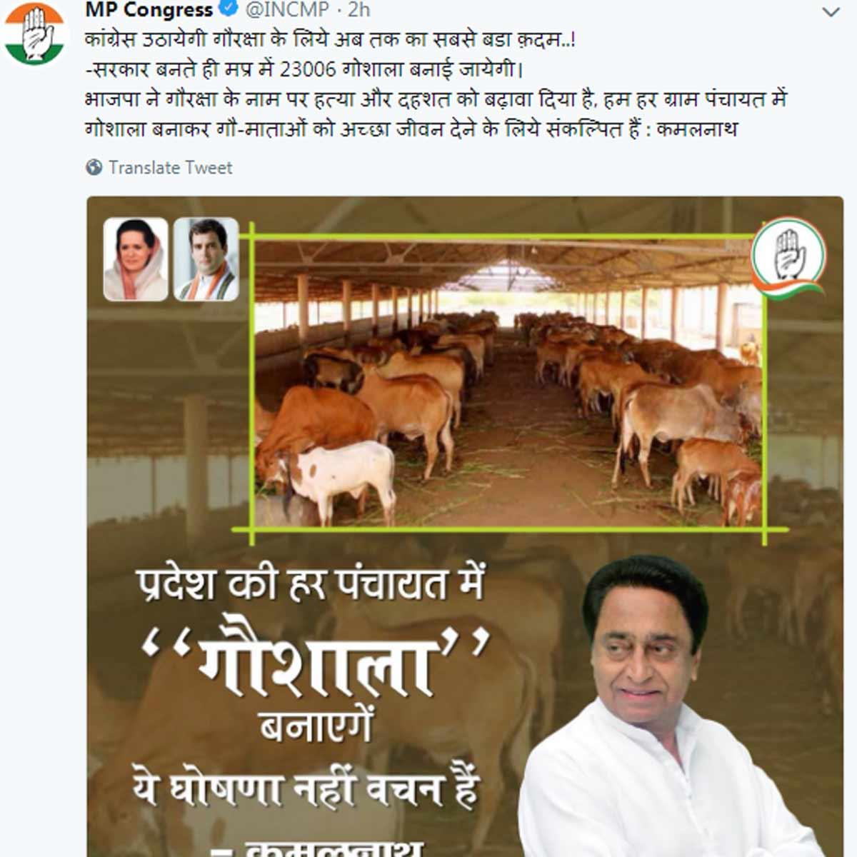 kamal-nath-cow-mp-congres-tweet
