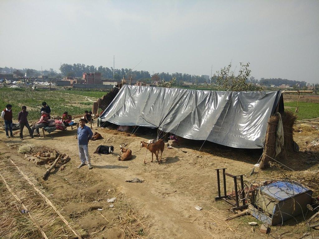 علی وردی پور گاؤں کے لوگ بعد عارضی خیمے میں رہنے پر مجبور ہیں۔ (فوٹو : روہن کمار / دی وائر)
