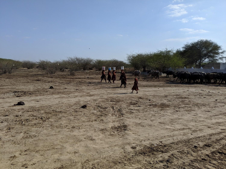 Gujarat-Drought-Photo-Kabir-Agarwal-13