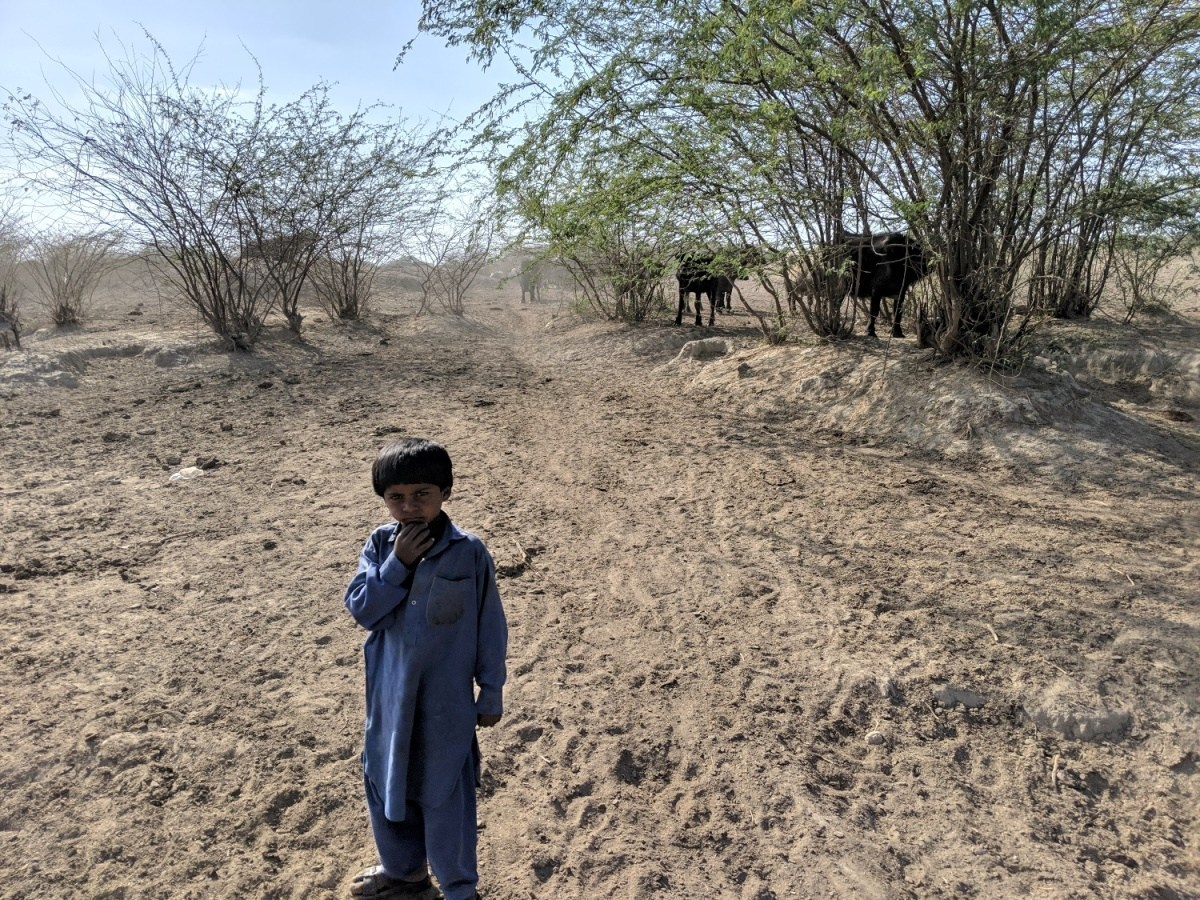 Gujarat-Drought-Photo-Kabir-Agarwal-2