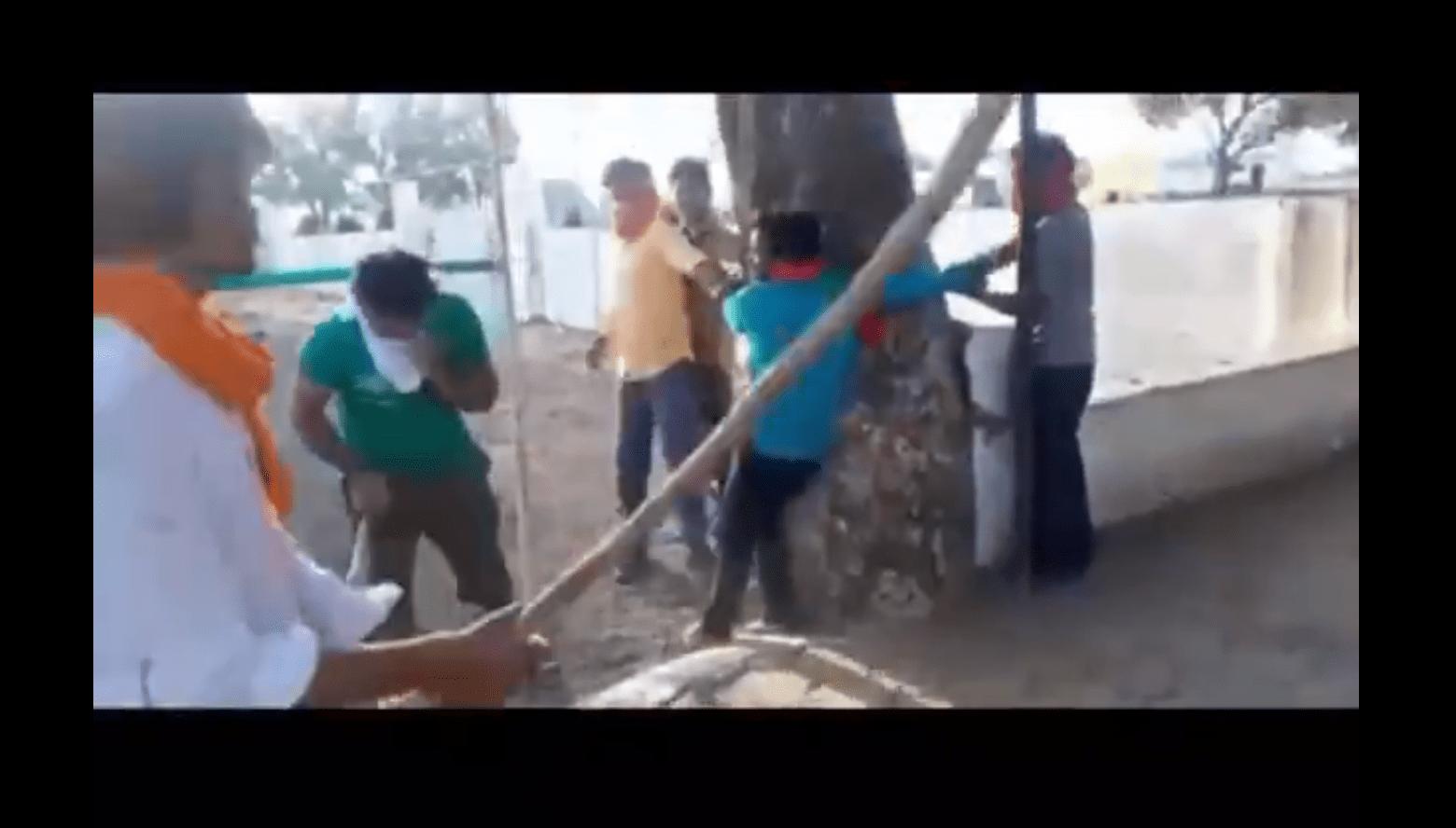 مدھیہ پردیش کے سیونی میں درخت سے باندھکر جوان کی پٹائی کرتے گئورکشک (فوٹو: ویڈیو اسکرین شاٹ)