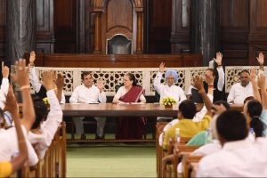 کانگریس کی پارلیامنٹری پارٹی کے اجلاس میں سونیا گاندھی کو اتفاق رائے سے پارٹی کا رہنما منتخب کرتے ممبر (فوٹو: اے این آئی)