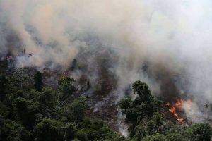 ایمیزون کے جنگلوں میں لگی آگ(فوٹو : رائٹرس)