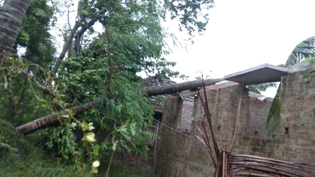 مغربی بنگال میں بلبل طوفان سے مچی تباہی (فوٹو بہ شکریہ: ٹوئٹر)