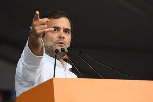 سابق کانگریس صدر راہل گاندھی۔ (فوٹو بشکریہ : ٹوئٹر/@INCIndia