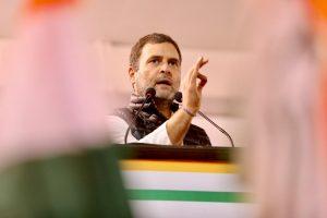 راہل گاندھی (فوٹو : ٹوئٹر / @INCIndia)