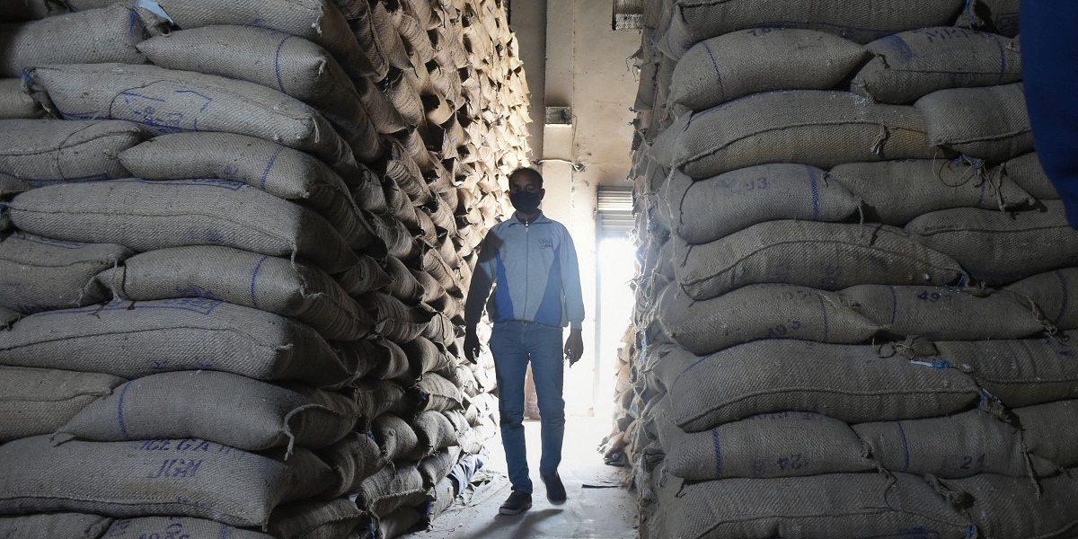 فوڈ کارپوریشن آف انڈیا کے ایک گودام میں رکھا گیا چاول۔ (فوٹو: پی ٹی آئی)