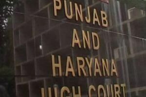 پنجاب اور ہریانہ ہائی کورٹ۔ (فوٹو: پی ٹی آئی)