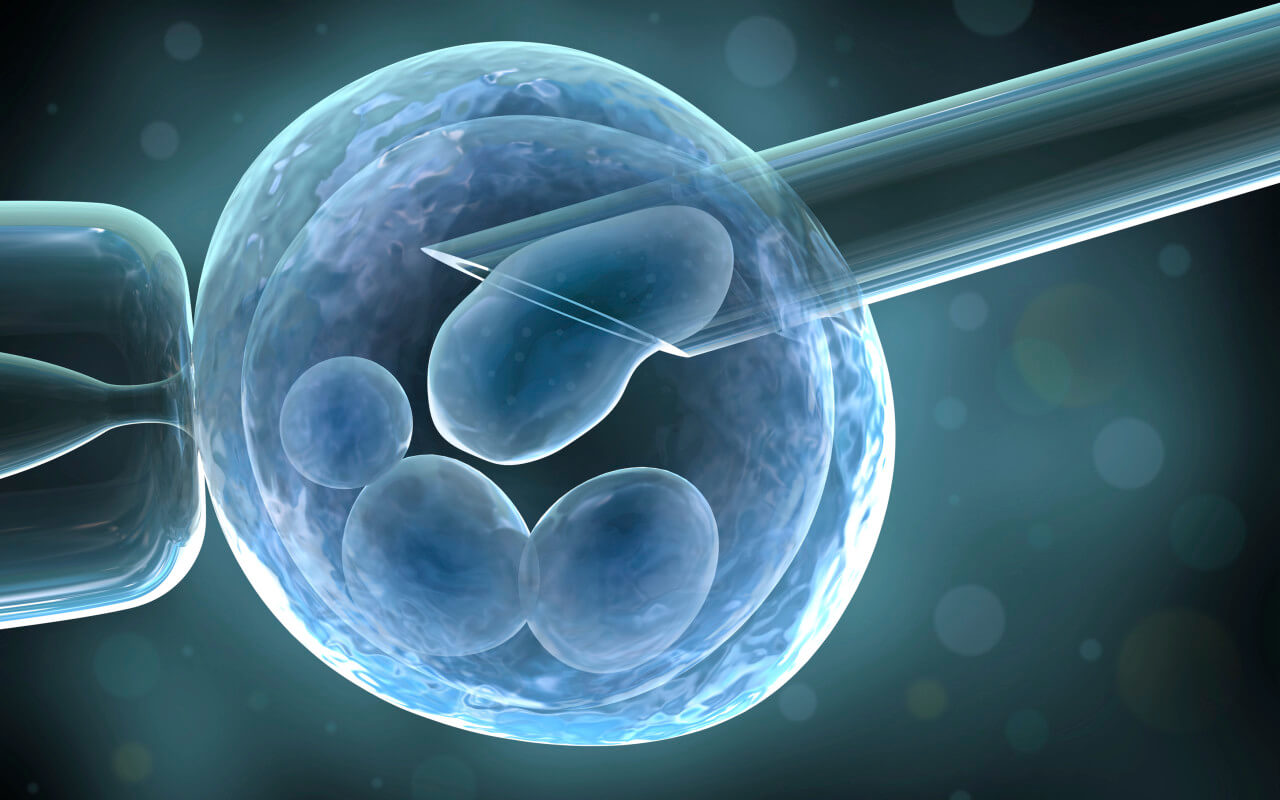 microscope image of cells reproductive treatment