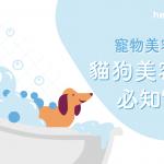 【 寵物美容 Q&A】貓狗美容 護理必知7件事