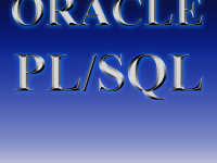 Professional Training on Oracle PL/SQL