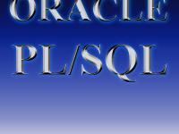 Oracle PL/SQL
