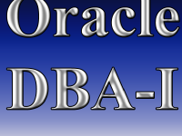 Oracle DBA-I