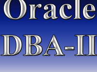 Oracle DBA-II