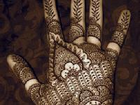 Mehendi Workshop