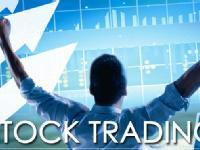 Stock Trading and Investment Workshop