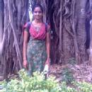 Indhumathi R. photo