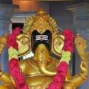 Vijayender Vempati photo