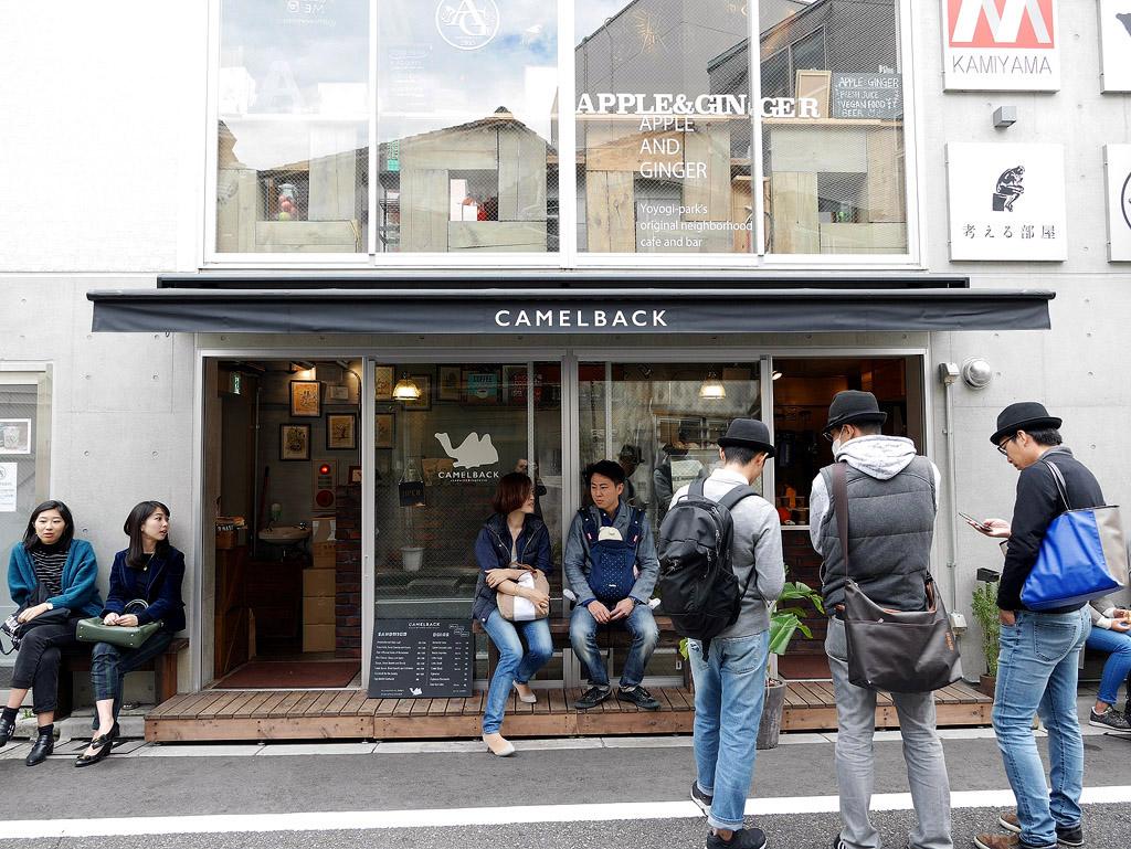 camelback_01