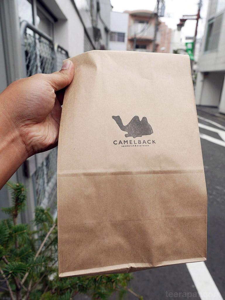 camelback_03