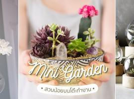 ไอเดีย Mini Garden สวนน้อยบนโต๊ะทำงาน (ความรู้ช้อปปิ้ง #8)