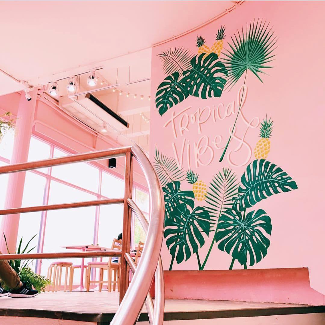 pinkplanter_pinkplanter_02