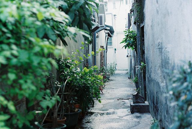 flickr.com/misterpo