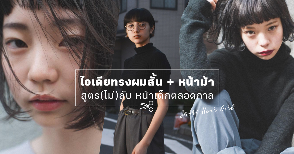 shopspot_cover_july_shorthair