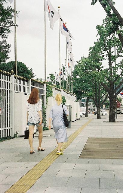 flickr.com/shimitake85