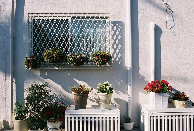 flickr.com/halfrain