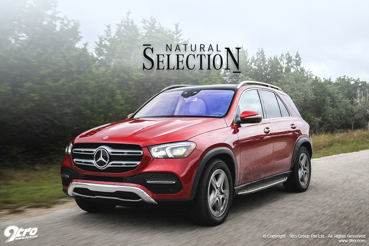 2018 Mercedes-Benz GLE - Natural Selection