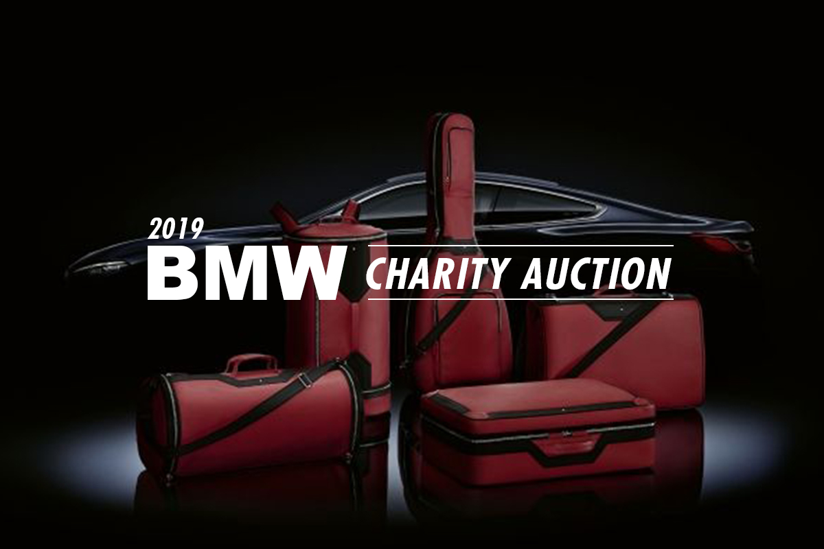 The 2019 BMW Charity Auction