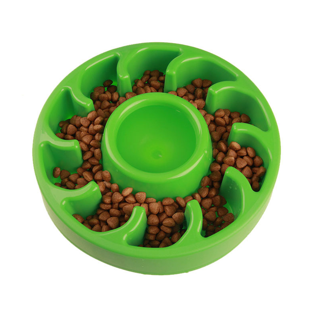Amazon Dog Food Bowl To Slow Down