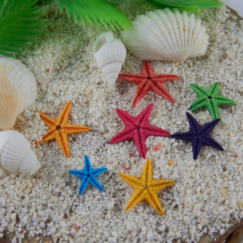 Cute Diy Home Decor Ideas: 20pcs Mini Natural Starfish Decorations Sea Star Crafts