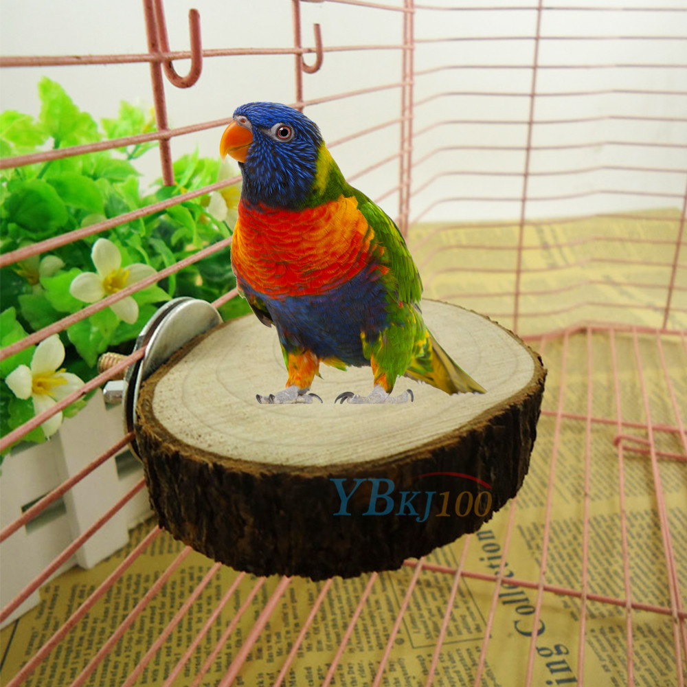 Wood Bird Toys : Parrot pet bird cage chew toy natural wood stand platform