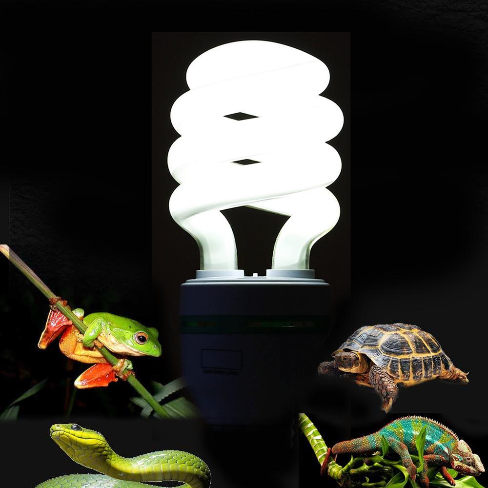 5 0 uvb 13w reptile light bulb uv lamp vivarium terrarium tortoise turtle snake ebay - Turtle nite light ...
