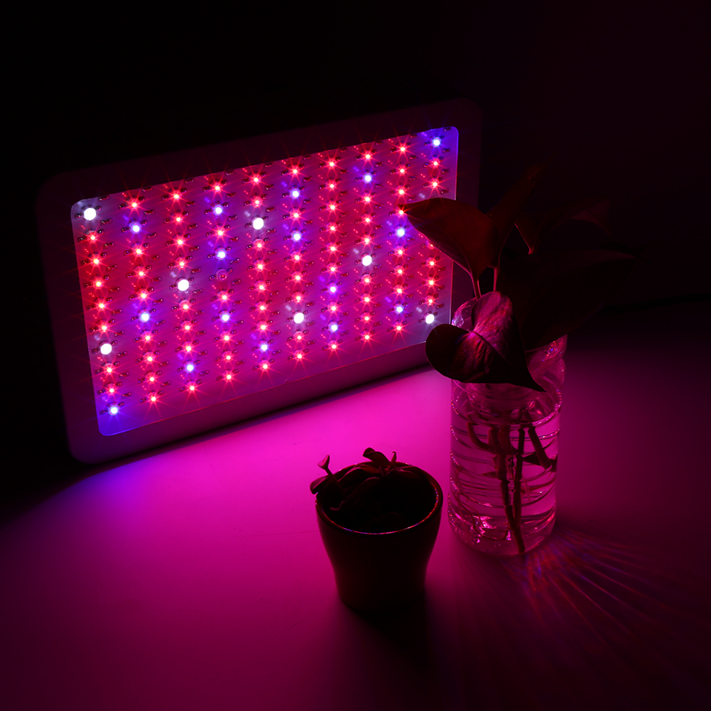 details about 2x 1000w led grow light hydro medical plants indoor veg. Black Bedroom Furniture Sets. Home Design Ideas