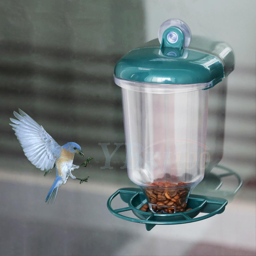 Transparent plastic hanging garden shower ornament outdoor for Plastic bird feeders