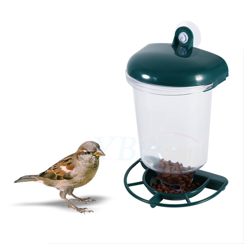 Wild bird feeder garden glass window hanging suction cup
