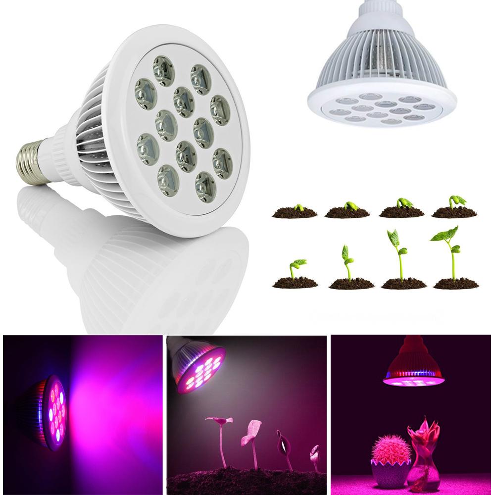 36w led pflanzenleuchte pflanzen lampe licht vollspektrum pflanzenlicht grow e27 ebay. Black Bedroom Furniture Sets. Home Design Ideas