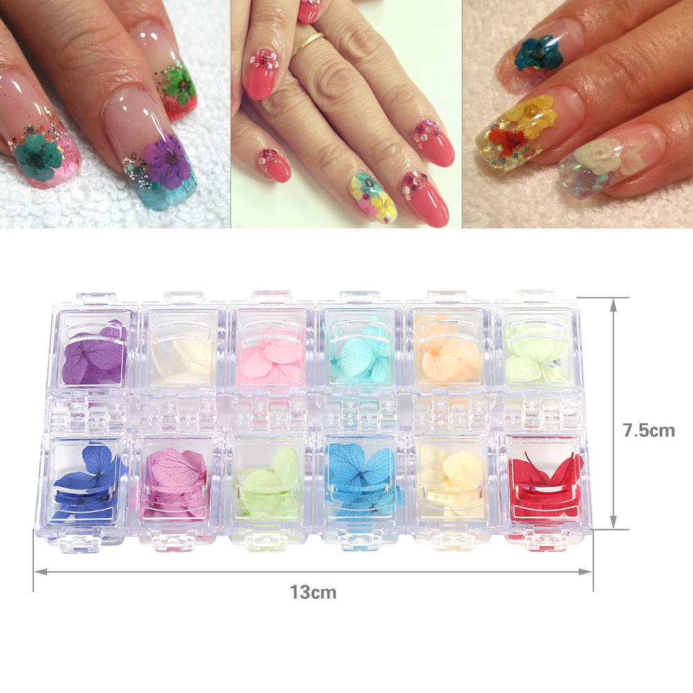 12 Colors Real Dried Flowers for Acrylic UV Gel Nail Art Tips Design ...