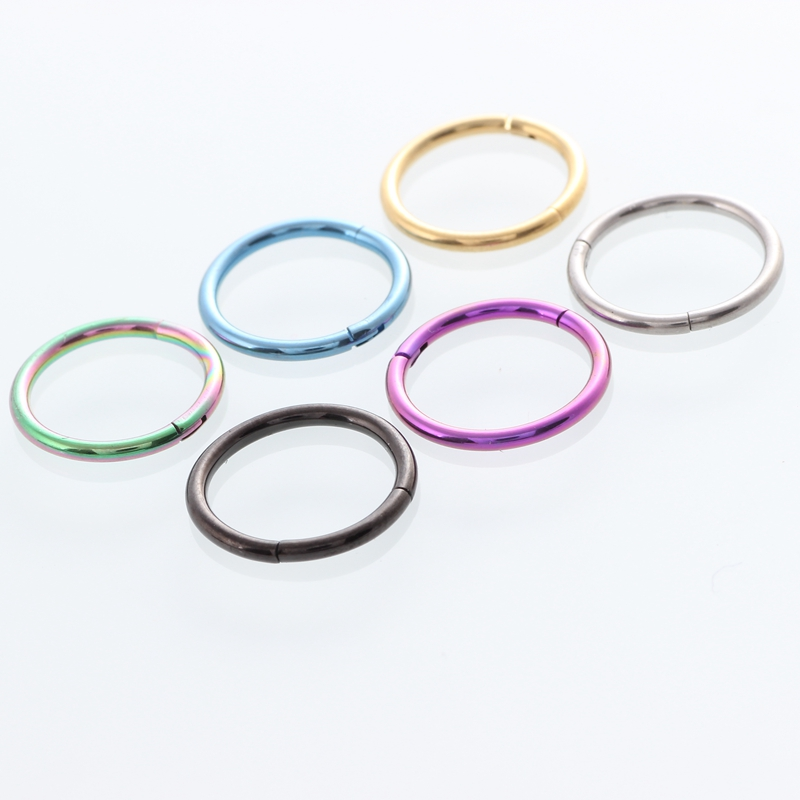 Titanium Hinged Segment Ring Hoop Ring Ear Lip Nose Septum