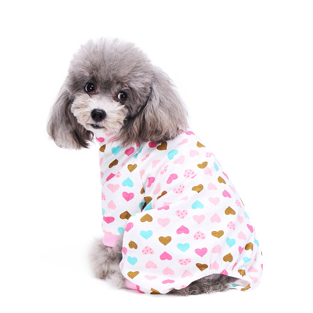 how to start a small dog accessory business