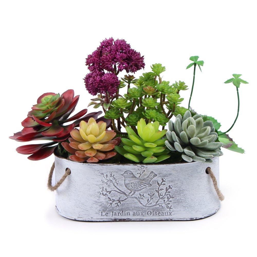 artificial plastic succulents plant faux cactus echeveria flower with iron pot ebay. Black Bedroom Furniture Sets. Home Design Ideas