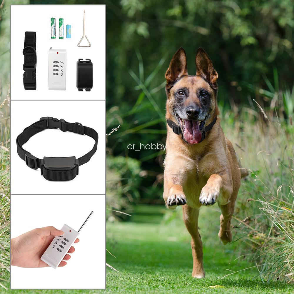 Remote Electronic Dog Collars To Stop Chasing Other Dogs