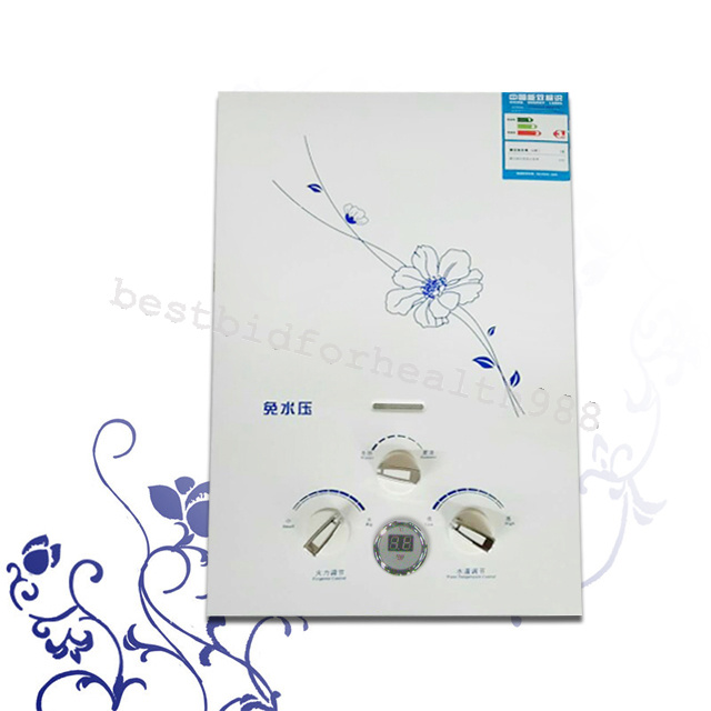 From Us 6l Instant Propane Lp Gas Hot Water Heater System