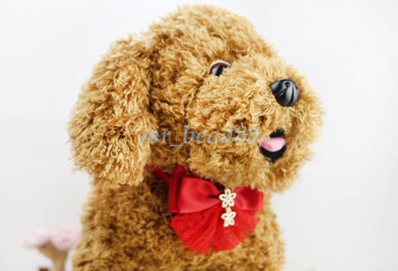Great Ribbon Bow Adorable Dog - 4071704420  Best Photo Reference_177862  .jpg