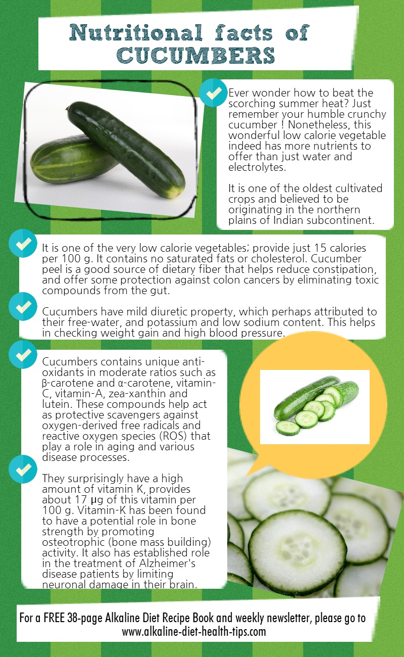 INFOGRAPHIC] Nutritional Facts of Cucumbers