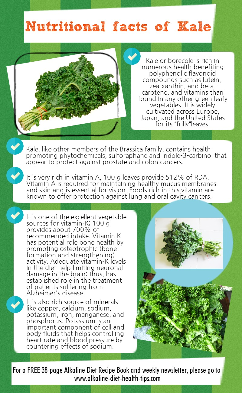 Nutritional Facts Of Kale